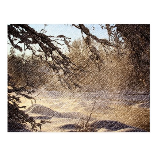 Árboles de pino rústicos del invierno postales