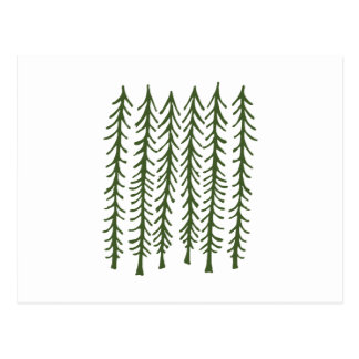 Árboles de pino postal