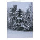 Árboles de pino y nieve que cae tarjeta