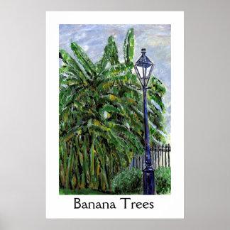 Árboles de plátano impresiones