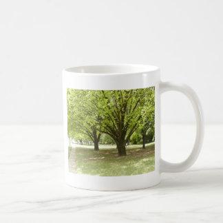 Árboles de sombra taza de café