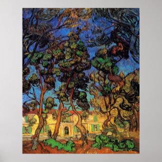 Árboles de Van Gogh en el jardín, hospital de Póster