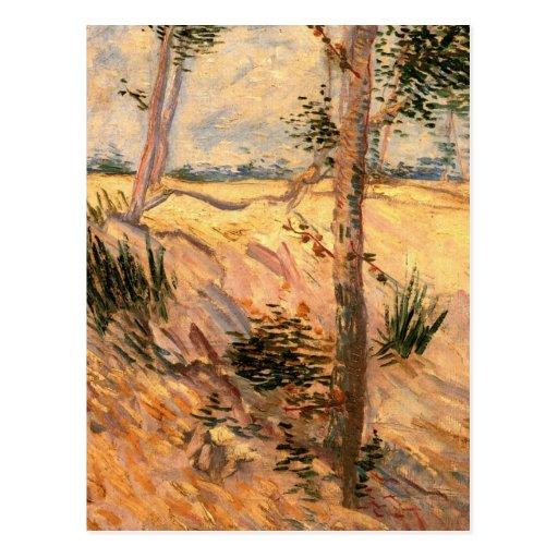 Árboles de Van Gogh en un campo en un día soleado Postales