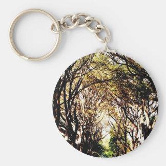 Árboles del Central Park en la alameda Llavero Redondo Tipo Pin
