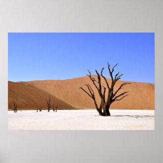Árboles del desierto póster