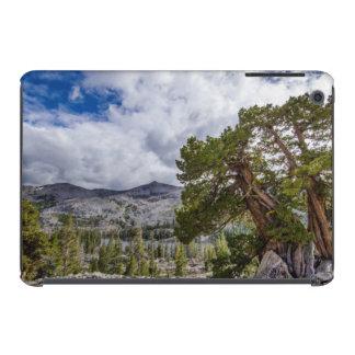 Árboles del enebro y del árbol de hoja perenne de fundas de iPad mini