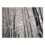 Árboles del invierno comunicados personalizados