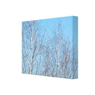 Árboles del invierno contra el cielo azul impresion en lona