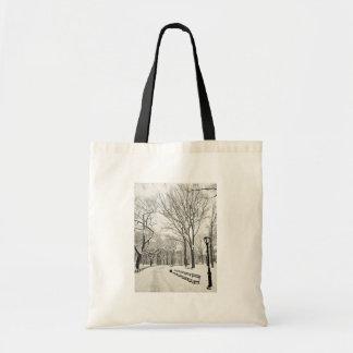Árboles del invierno cubiertos en nieve