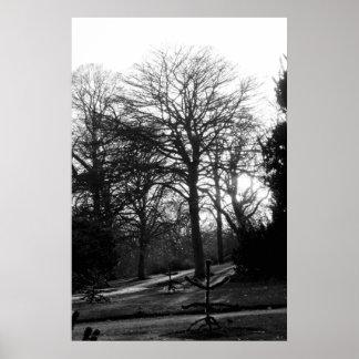 Árboles del invierno en blanco y negro poster