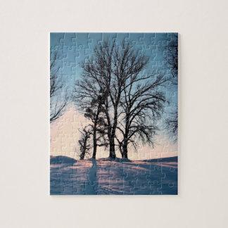 Árboles del invierno en el cielo azul crepuscular rompecabezas con fotos