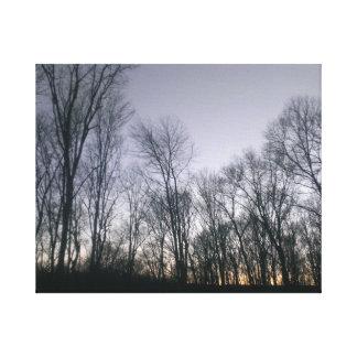Árboles del invierno impresión en lienzo estirada