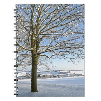 Árboles del invierno libro de apuntes
