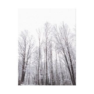 Árboles del invierno lona envuelta para galerias