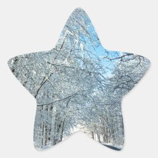 Árboles del invierno Nevado Pegatina En Forma De Estrella