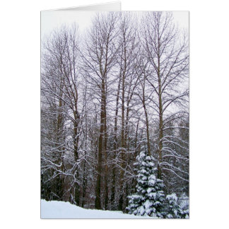 Árboles del invierno felicitación