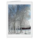 Árboles del invierno tarjeta