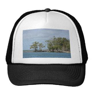 Árboles del mangle en la isla gorros bordados