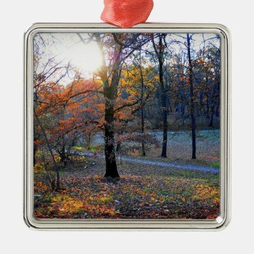 Árboles del otoño adorno para reyes