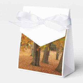 Árboles del otoño caja para regalo de boda