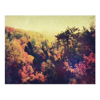 Árboles del otoño de Michigan del vintage Tarjetas Postales