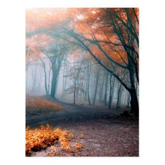 Árboles del otoño en maderas postal