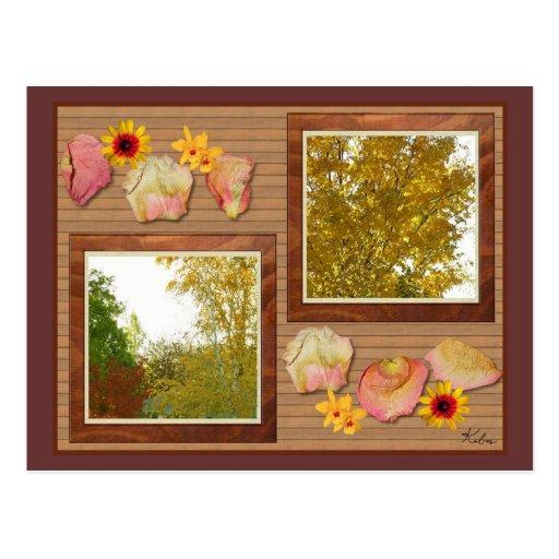 Árboles del otoño en una postal del collage de la