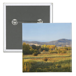 Árboles del otoño, Khancoban, montañas Nevado, nue Pin