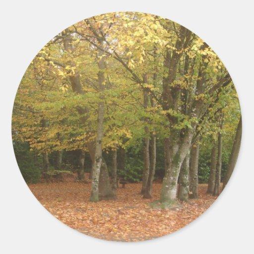 Árboles del otoño pegatina redonda