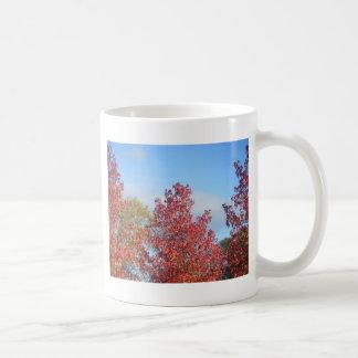 Árboles del otoño taza clásica