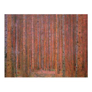 Árboles del rojo de Tannenwald del bosque del abet Postal