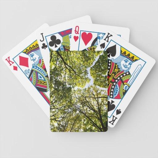 Árboles del verano baraja de cartas