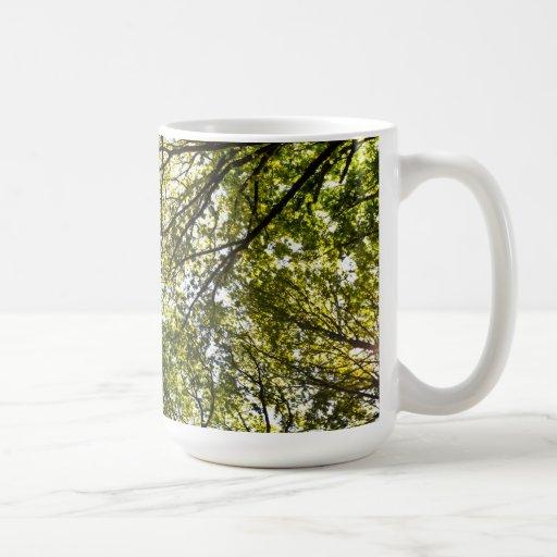 Árboles del verano taza