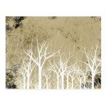 Árboles desnudos del invierno postal
