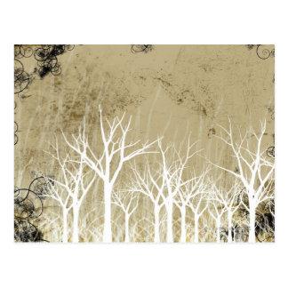 Árboles desnudos del invierno postales