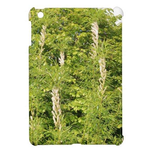 Árboles e hierbas iPad mini carcasas