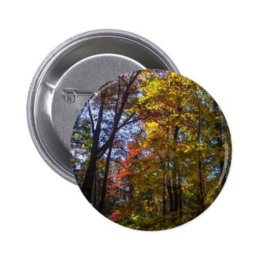 Árboles elevados de la caída pins