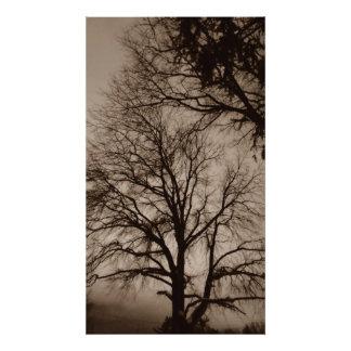 Árboles en arte de la sepia impresion fotografica