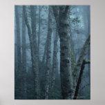 Árboles en bosque con la niebla poster