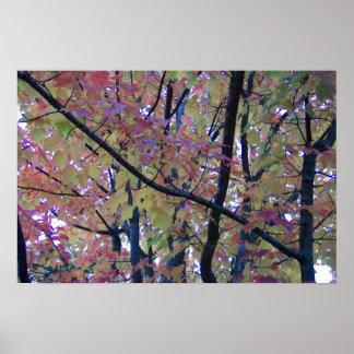 Árboles en caída impresiones