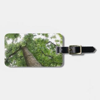 árboles en el bosque etiqueta de equipaje