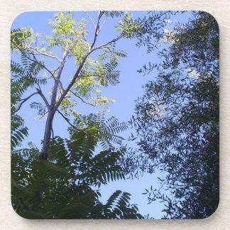 Árboles en el cielo posavasos de bebida
