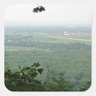 Árboles en el parque de estado de Wyalusing - Pegatina Cuadrada