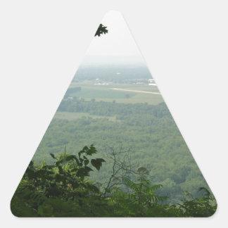 Árboles en el parque de estado de Wyalusing - Pegatina Triangular