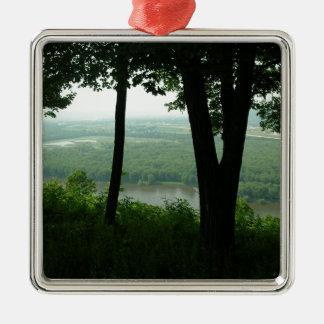 Árboles en el parque de estado de Wyalusing - río Adorno Navideño Cuadrado De Metal
