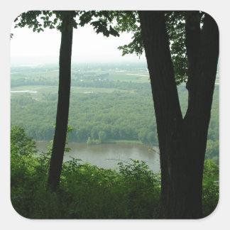 Árboles en el parque de estado de Wyalusing - río Pegatina Cuadrada
