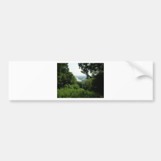 Árboles en el parque de estado de Wyalusing - río  Pegatina Para Auto