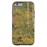 Árboles en el parque nacional magnífico de Teton, Funda Resistente iPhone 6