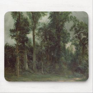 Árboles en Hampstead Alfombrilla De Ratones
