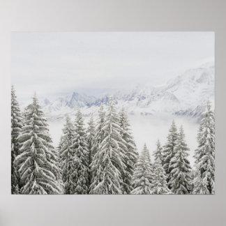 Árboles en invierno póster